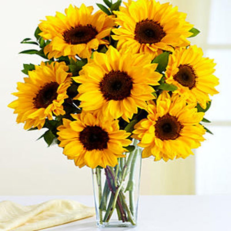 Beautiful Seven Sunflower Combo With Vase Home Decor