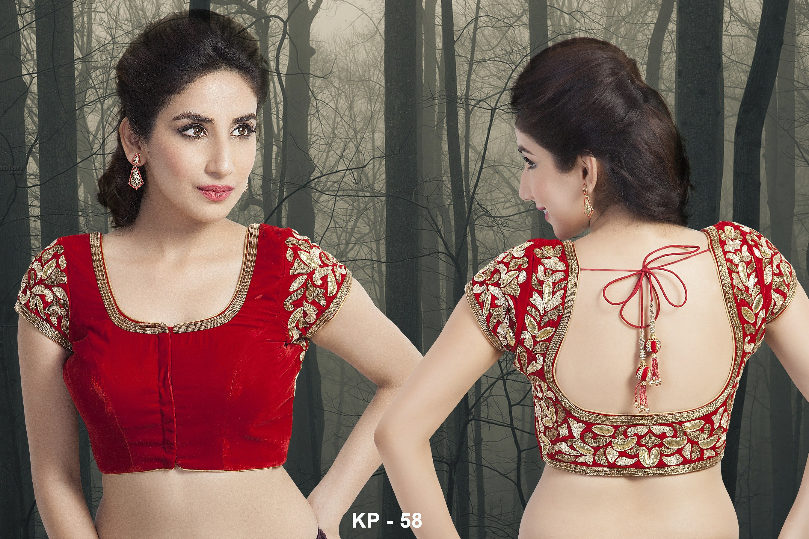 Zari Border Blouse Designs 118